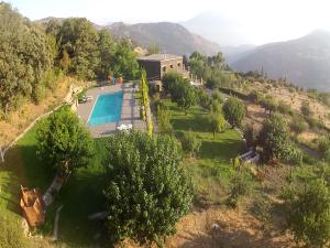 Cortijo View